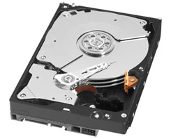 Western Digital WD Black Hard Disk Drive